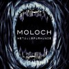 Metallspürhunde - Moloch